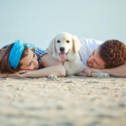 Guidelines for a fun and happy summer with your pet